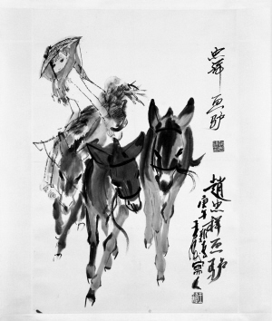 赵忠祥除了为《动物世界