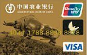 农行金穗公务Visa卡