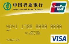 农行金穗双币种贷记卡(金卡 VISA)