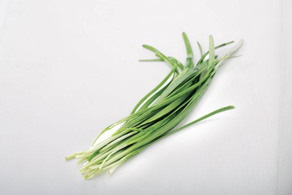 菠菜叶片结构简图