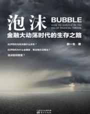 查看泡沫:金融大动荡时代的生存之路