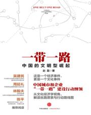 查看一带一路:中国的文明型崛起